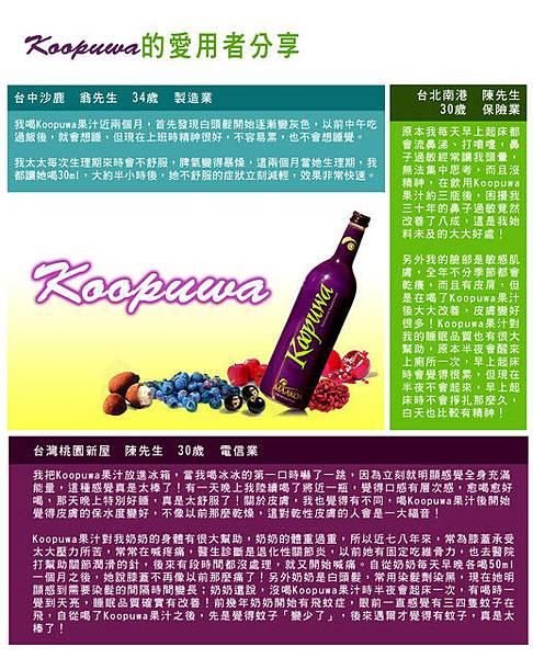 網站廣告設計★保健果汁(5)