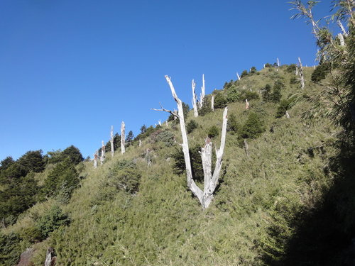 32玉山山景2011年.jpg