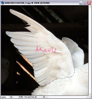 2009-10-12_213331.jpg
