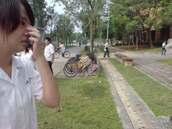 bike很多