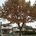 2013-10-17 11.44.22.jpg