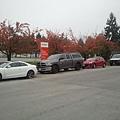 2013-10-20 12.31.58.jpg