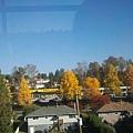 2013-10-24 11.11.25.jpg