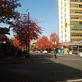 2013-10-24 11.57.10.jpg