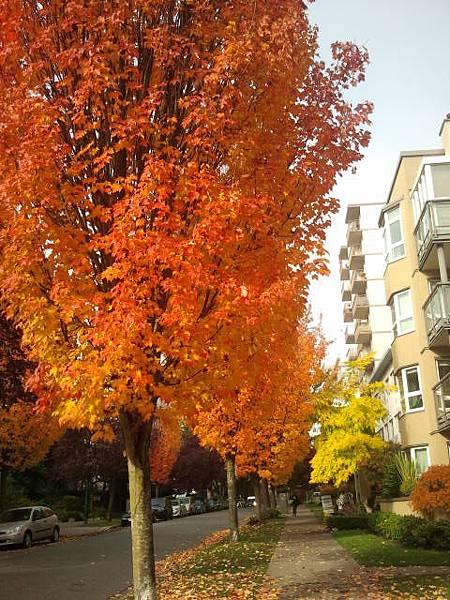 2013-10-24 12.34.22.jpg