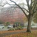 2013-10-24 12.49.18.jpg