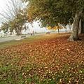 2013-10-24 12.56.25.jpg