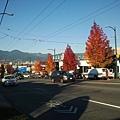 2013-10-27 16.17.48.jpg