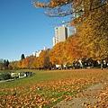 2013-10-28 14.49.08.jpg
