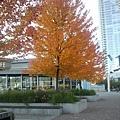 2013-10-28 16.09.58.jpg