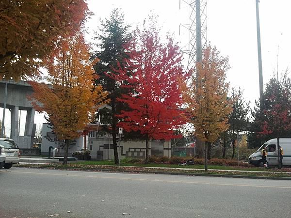 2013-10-30 13.36.09.jpg