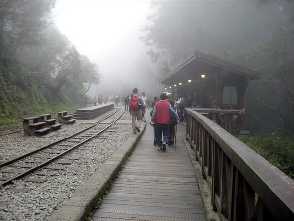阿里山的...小火車