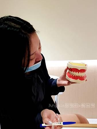 美齒居家護理-桃園美齒推薦桃園牙齒淨白推薦