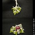 豆沙粽-02.jpg