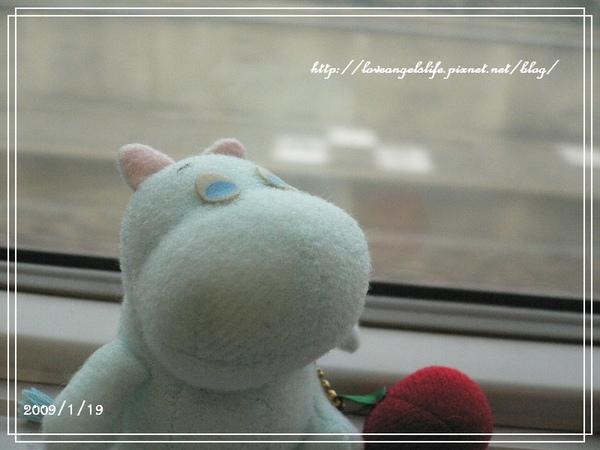 一早出發(2009/01/19)