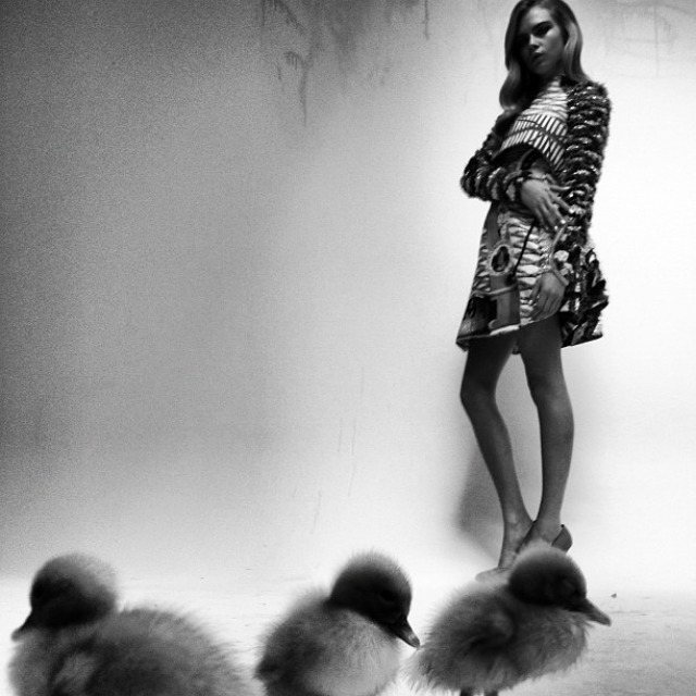 cara-delevingne-by-nick-knight-pussycat-pussycat-240412-2