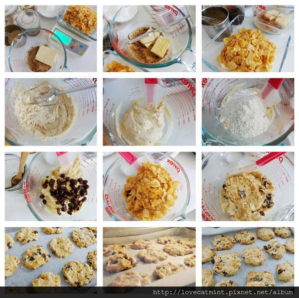 葡萄乾玉米脆片餅乾