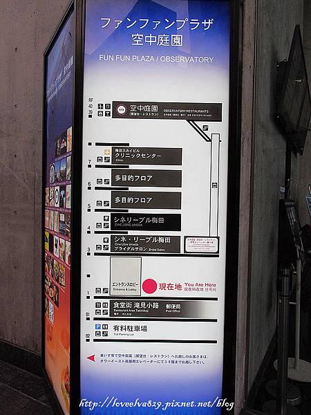 P4083614.jpg