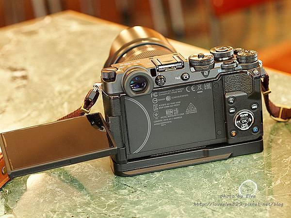 P3030045.jpg