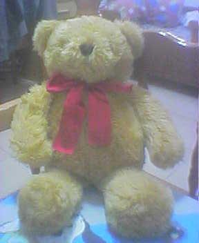 古錐的熊*