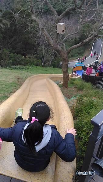 新竹 香山區-青青草原 黃色溜滑梯