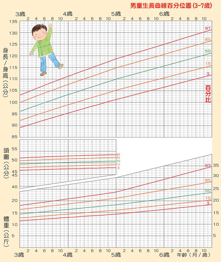 「男童」生長曲線百分位圖(3-7歲,身高/頭圍/體重),身高體重換算