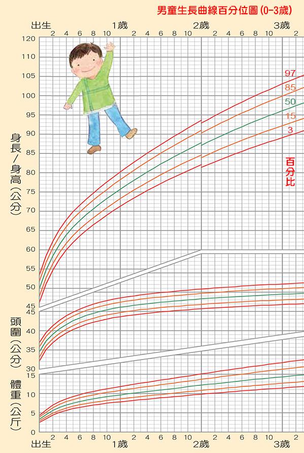 「男童」生長曲線百分位圖(0-3歲,身高/頭圍/體重),身高體重換算