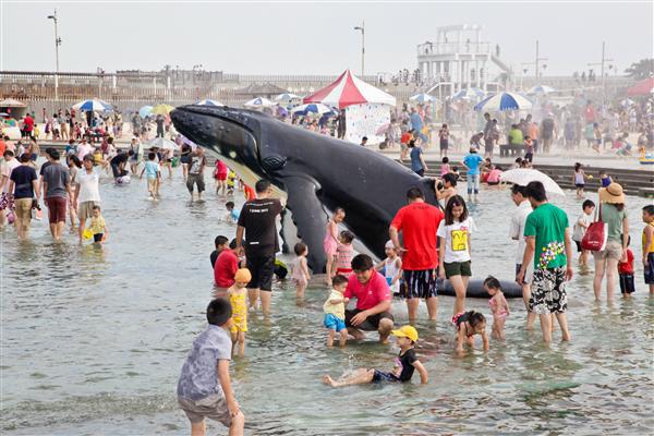 【嘉義玩水景點(免費)】💦東石漁人碼頭鯨魚池