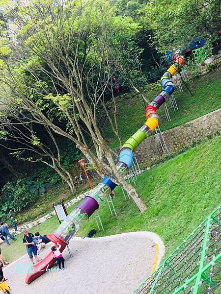 """<三峽公園>來中山公園挑戰:療癒森林的""""彩色水管滑梯""""+跑酷棧道大考驗"""