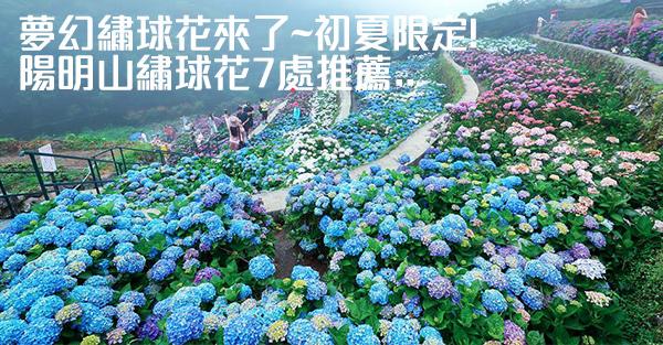 展覽活動推薦:2019陽明山繡球花7處推薦