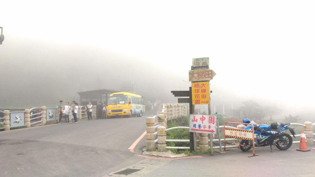 大梯田繡球花,公車坐到竹子湖的海芋大道(竹子湖站)下車,下車後就可以在對面看到我們農園的指標