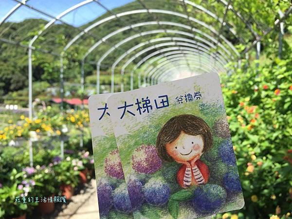 大梯田花卉生態農場門票~兌換券