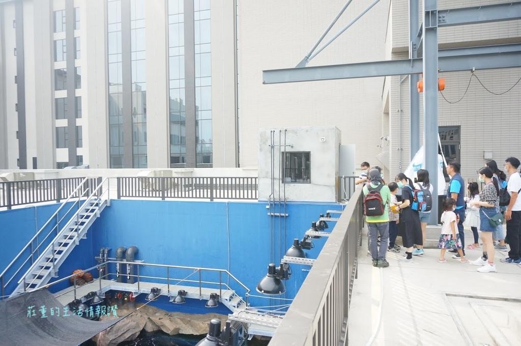 桃園水族館Xpark 自費活動:後場探險~台灣大水槽