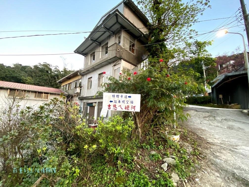 貓空樟樹步道 (6).jpg