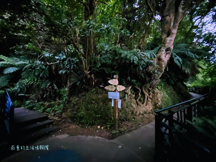 新店 碧潭 和美山步道  (9).jpg