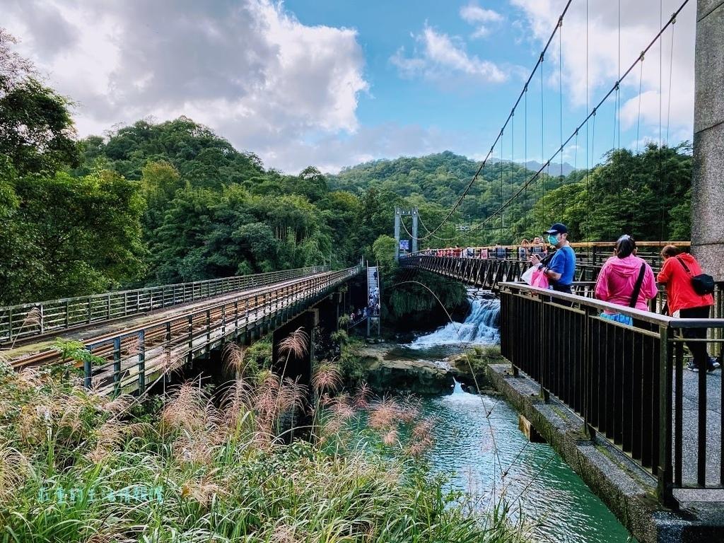 新北十分瀑布一日遊 (觀瀑吊橋.jpg