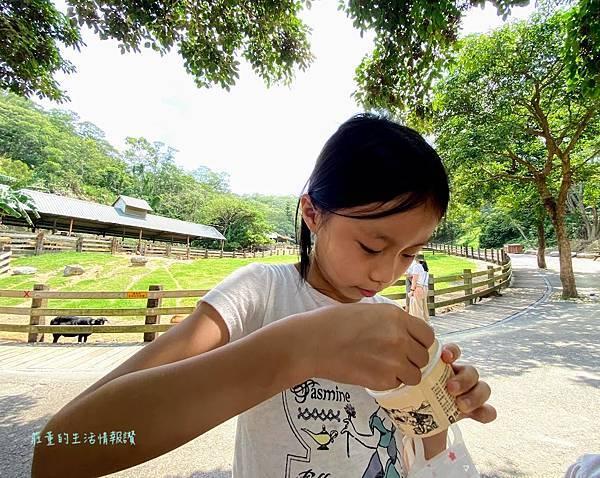 飛牛牧場 鮮奶冰淇淋 (2).jpg