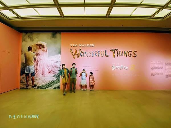奇美博物館特展2021蒂姆・沃克:美妙事物~2022 (10).jpg
