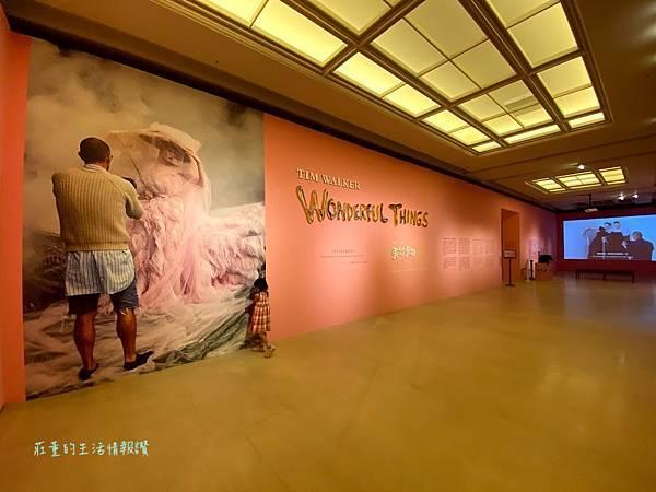 奇美博物館特展2021蒂姆・沃克:美妙事物~2022 (79).jpg