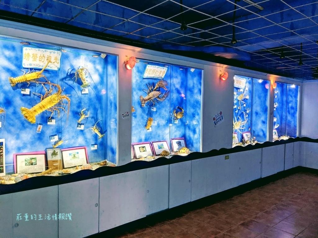 螃蟹博物館 (5).jpg
