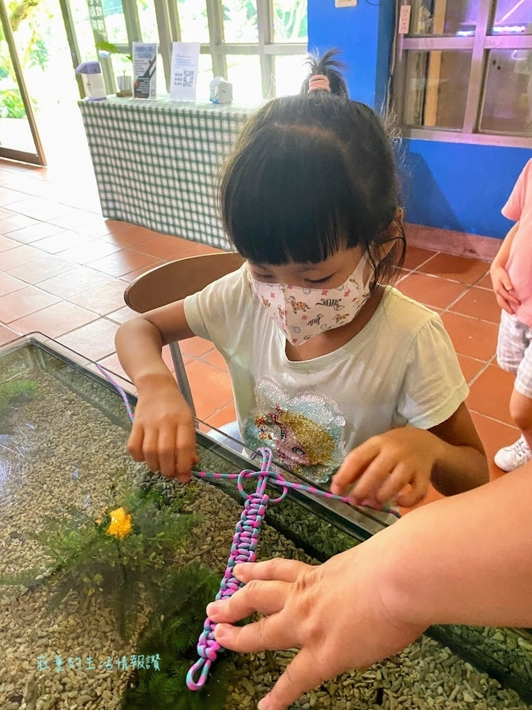螃蟹咖啡館DIY (5).jpg
