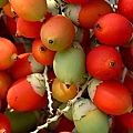 棕櫚油10.jpg