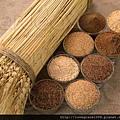 小麥胚芽油6.jpg
