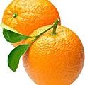 橘油4.jpg