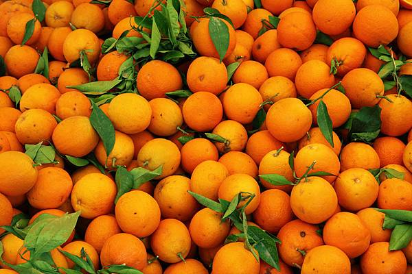 橘油6.jpg
