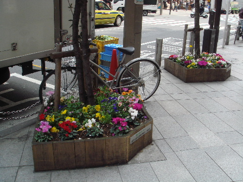 路面很乾淨  還種小花
