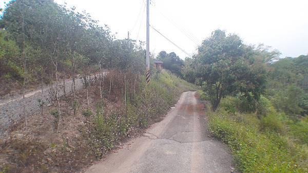 路 (9).jpg