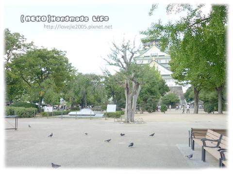大阪城現今叫大阪城公園,裡面很古色古香...很大喔!!