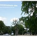 大阪城隱沒在樹裡..XD