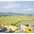 龜岡駅外頭一片綠油油的稻田